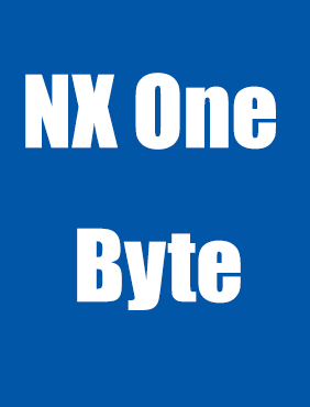 NX One Byte